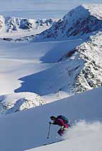 Skiing powder in Atlin